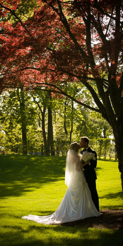 bride and groom embracing outside under a tree